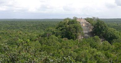 Visite de Calakmul, une cité maya au coeur de la jungle mexicaine